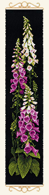 RIOLIS Foxgloves