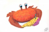 Pincushion Crab