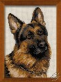 German Shepherds;