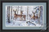 Woodland Winter, Deers