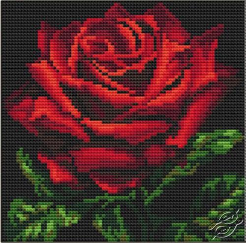 Вышивка красные цветы на черном фоне 16