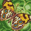 Cushion With Butterfly III
