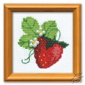 The Garden Strawberry