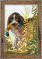 Hunting - The Spaniel