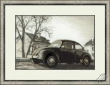 Old photo - A Car Bug