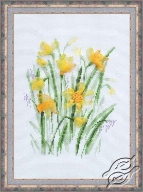 The Spring Narcissuses