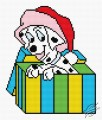 Dalmatian Dog In Box