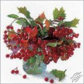 Bunch of Viburnum