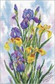 Watercolor Irises