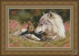 Late Spring Wolf and Pup