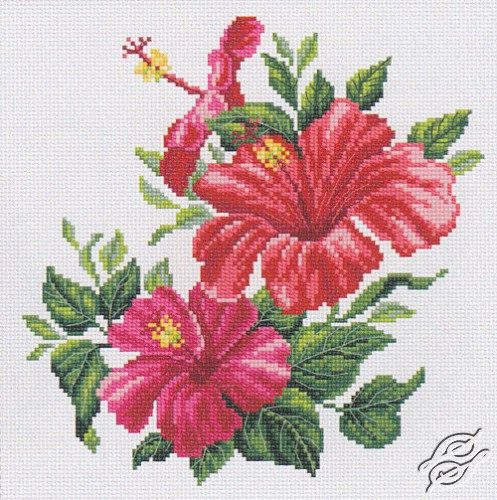Houten Keuken La France Rose : CROSS STITCH KITS RTO Cross Stitch Kits Flowers