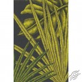 Palm Leaves I