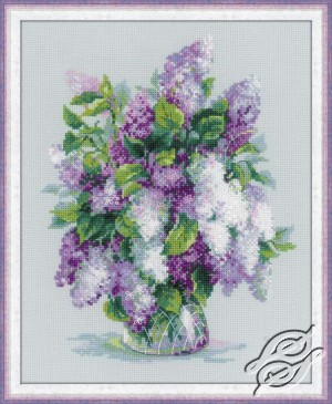 Gentle Lilac