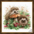 Hedgehogs in Lingonberries