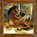 Foal and Puppy