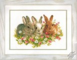 Rabbits in the Field of Flowers