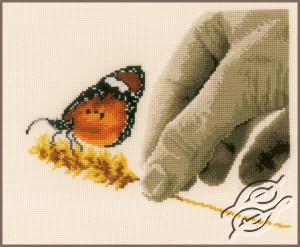 Hand & Butterfly