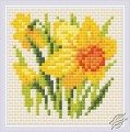 Diamond Mosaic Yellow Narcissus