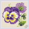Pair of Pansies